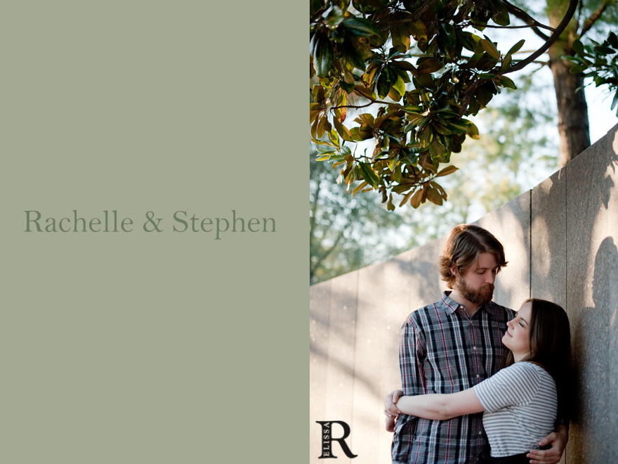 houston engagement photography at the museum of fine arts