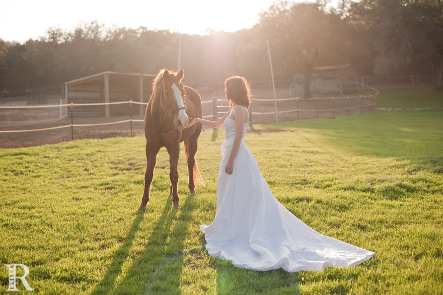 Wedding Dress With Horse