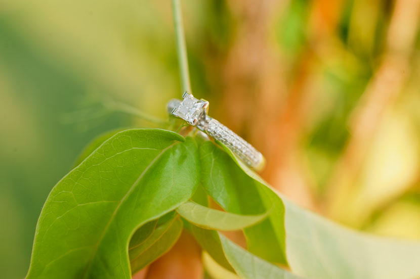 creative engagement ring macro