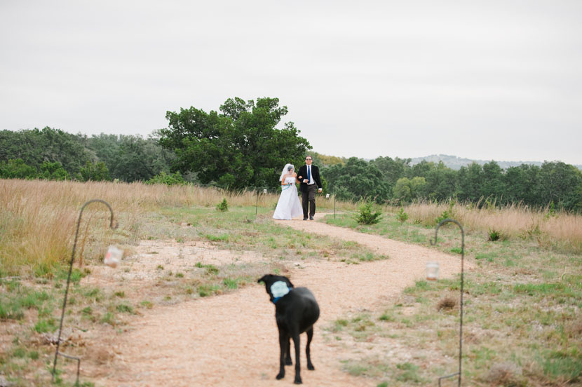 dog waits for bride to walk down the aisle