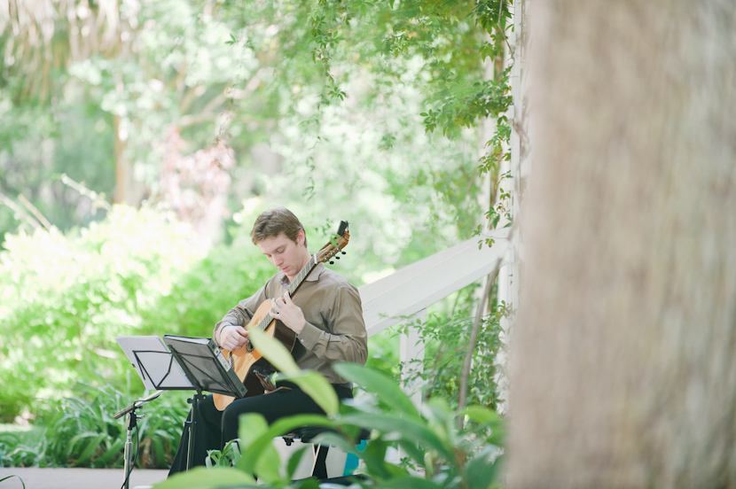 musician plays at outdoor mayfield park wedding