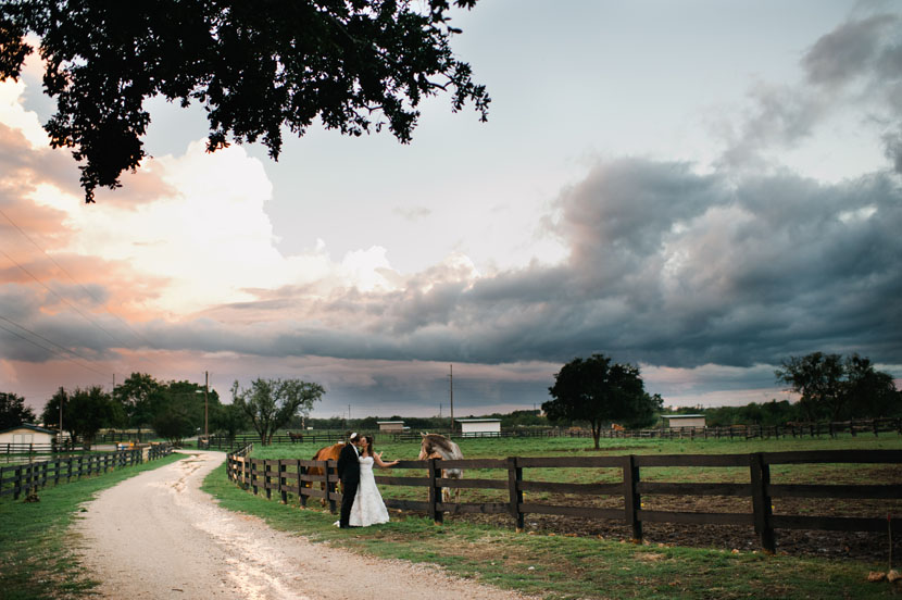horses in the background of wedding portrait at kali kate