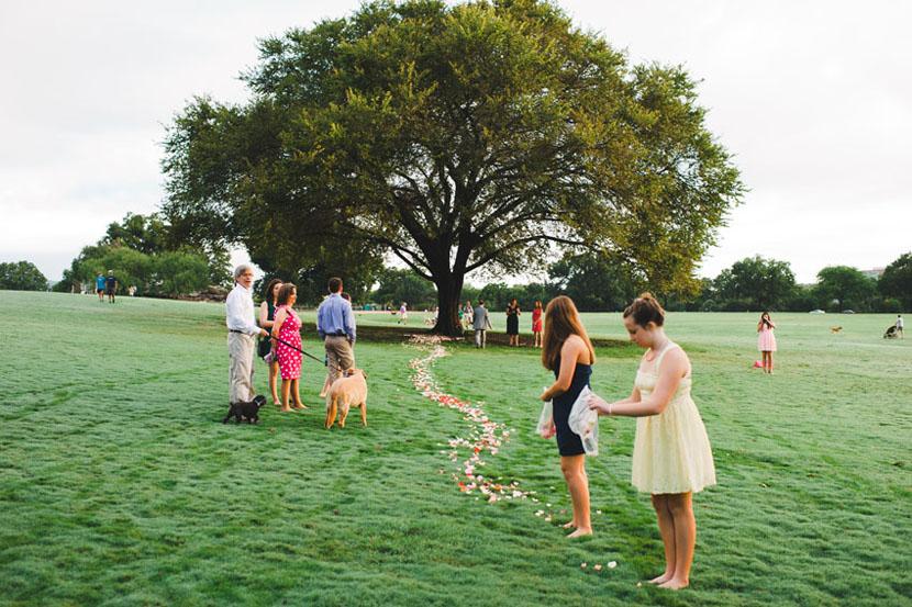 Guerilla Wedding Rose Petals Zilker Park Intimate