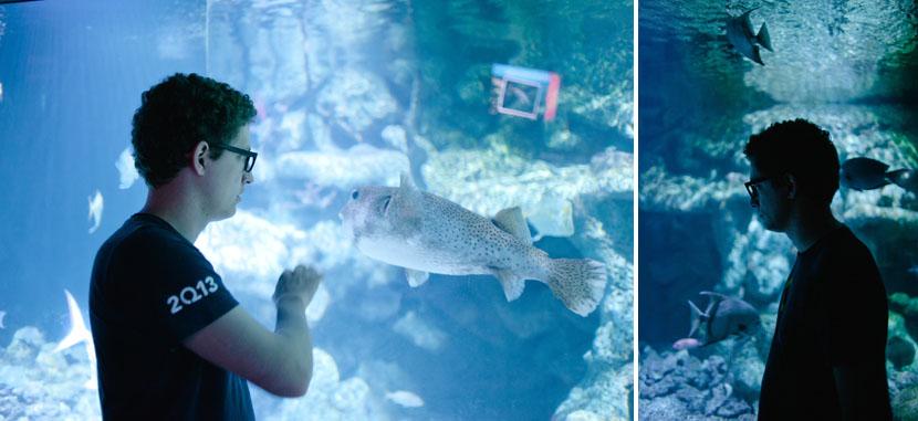 wedding reception held in an aquarium