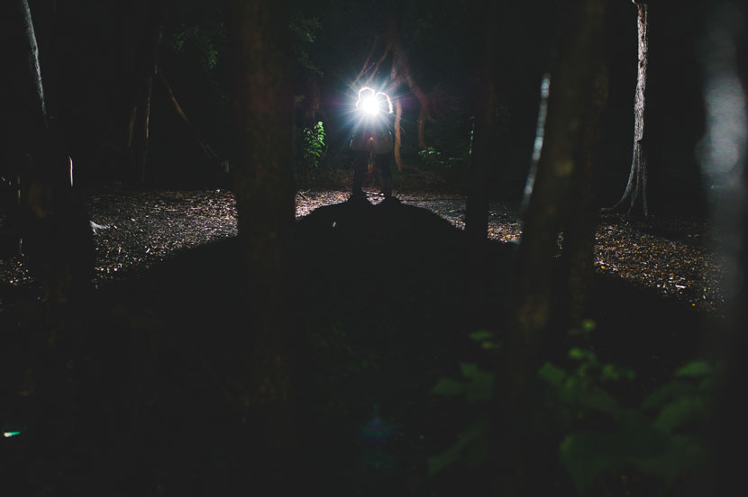 Dark forest engagement photos // Elissa R Photography