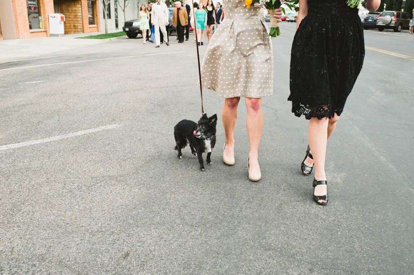 dogs included in wedding ceremony