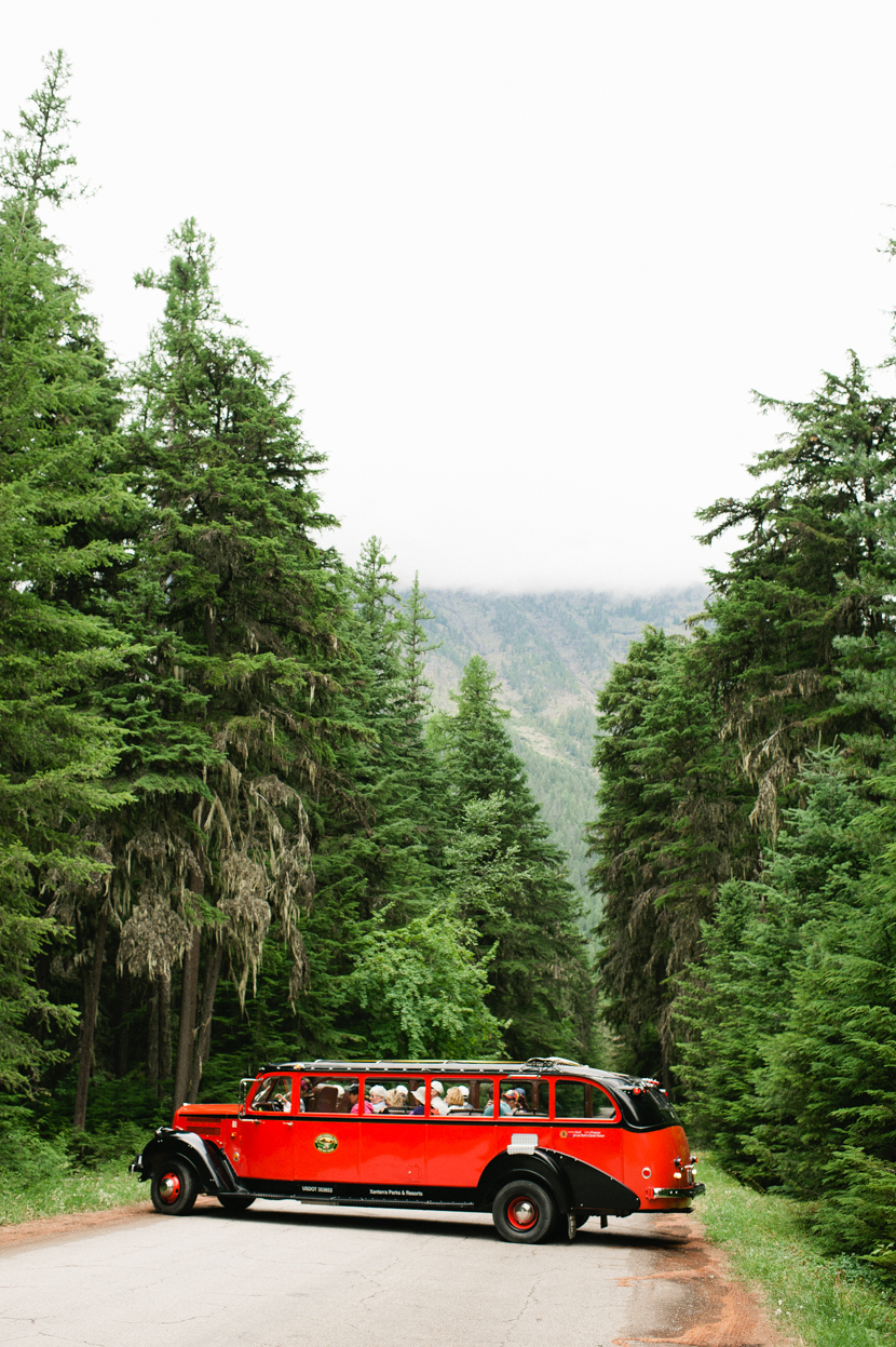 tour bus glacier park