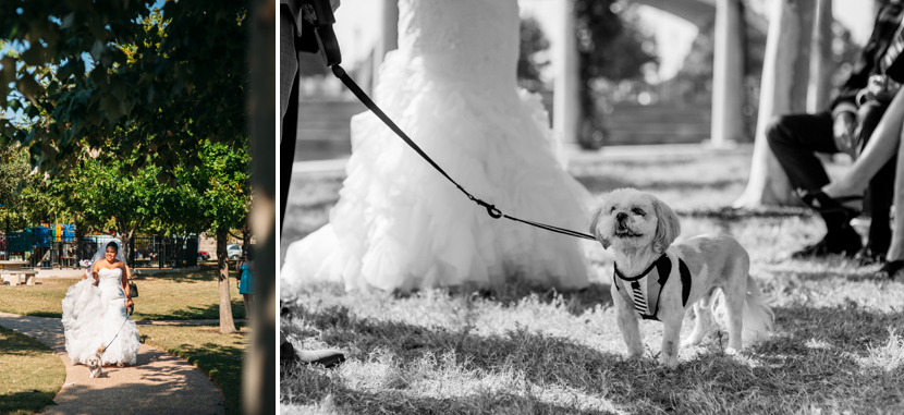 including your dog in wedding ceremony