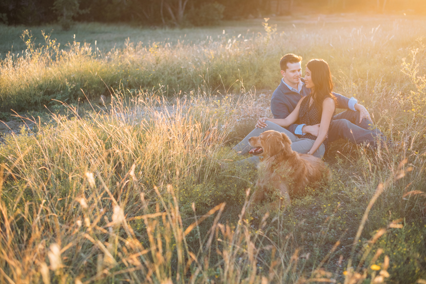 including a dog in your engagement session
