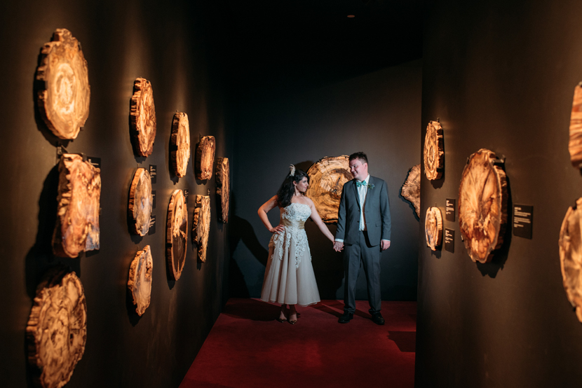 natural science museum wedding