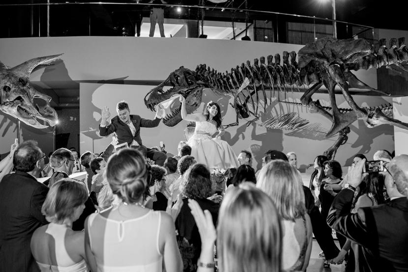 hora in houston paleontology hall