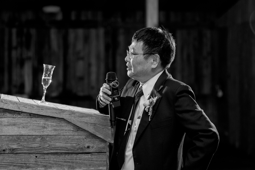 great wedding toasts by parents