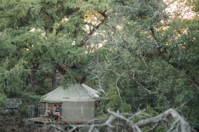 treehouse wedding texas