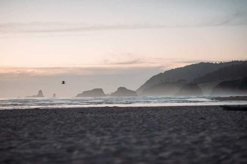 oregon coast engagement