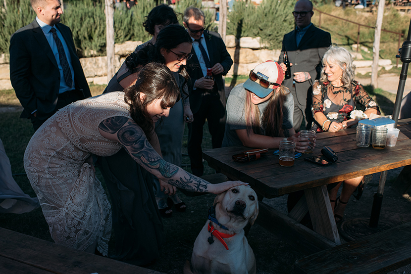 doggos at jester king brewery cocktail hour