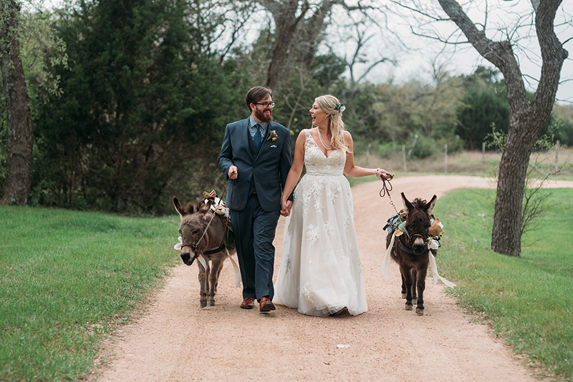 austin wedding with miniature donkeys