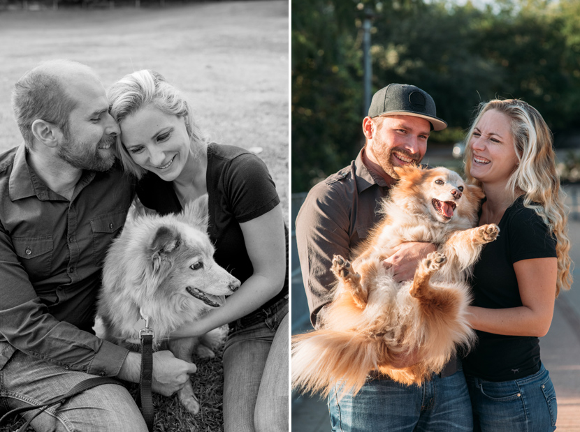 dogs included in engagement sessions