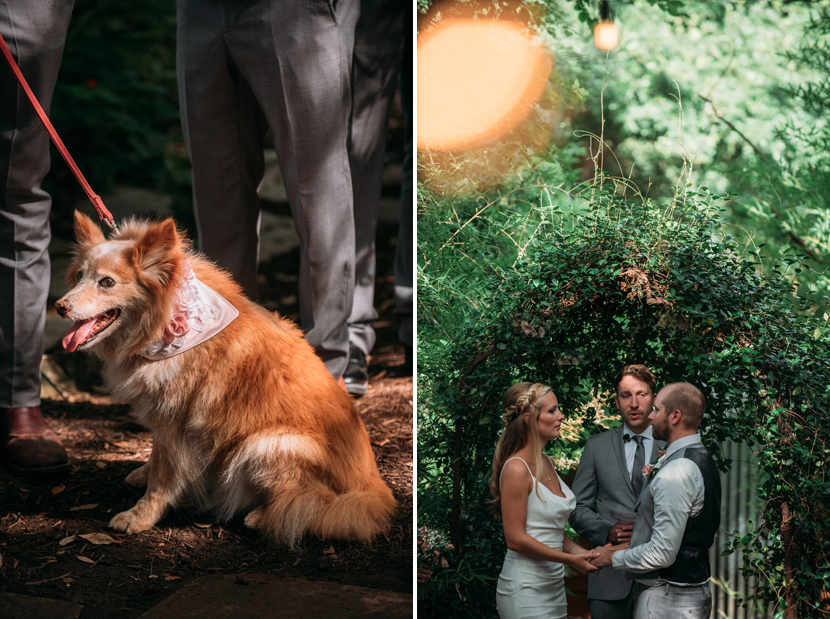 couple says their i dos next to their dog